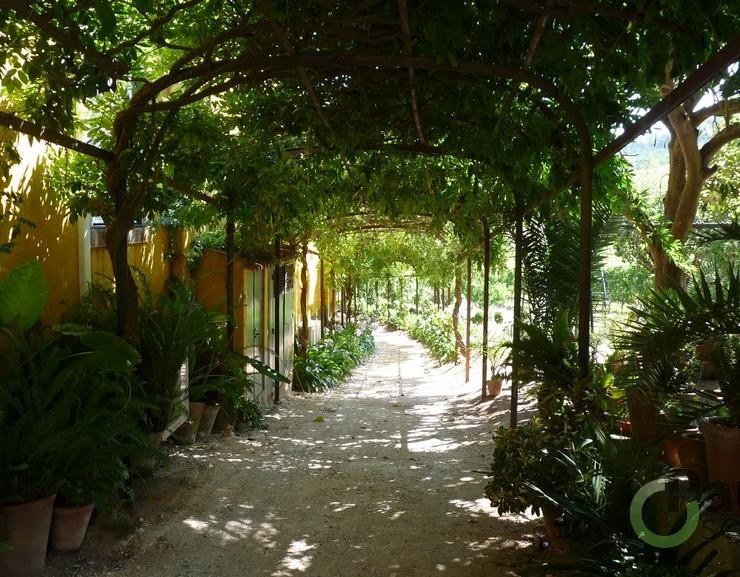 Fantastische wijngaarden in Portugal